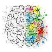 Brain Trainer App, aplicativos para manter o cérebro afiado.