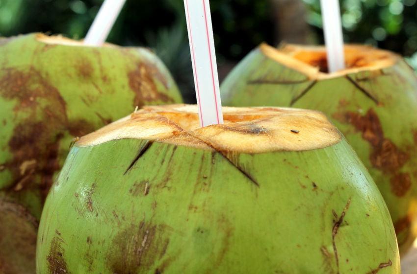 Quais os benefícios de beber água de coco diariamente. Imagem: Pixabay