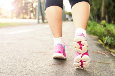 Vamos nos exercitar? Que tal começar caminhando?