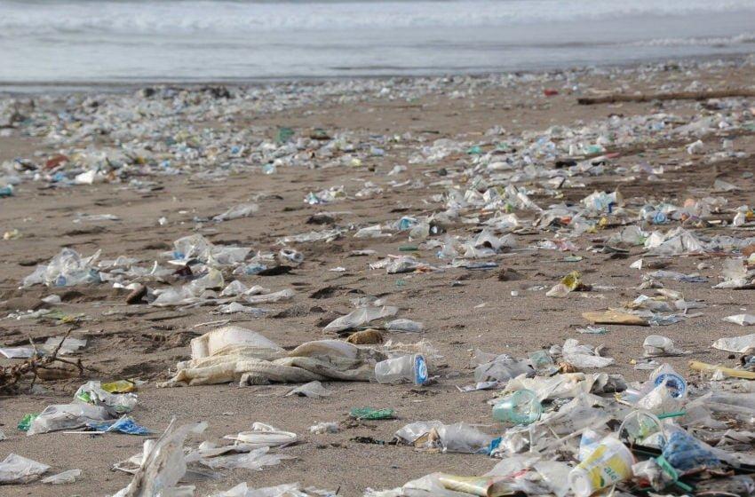 O problema do lixo plástico nos oceanos
