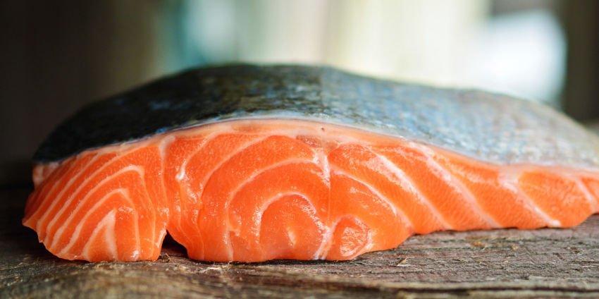 Salmão cultivado versus salmão selvagem