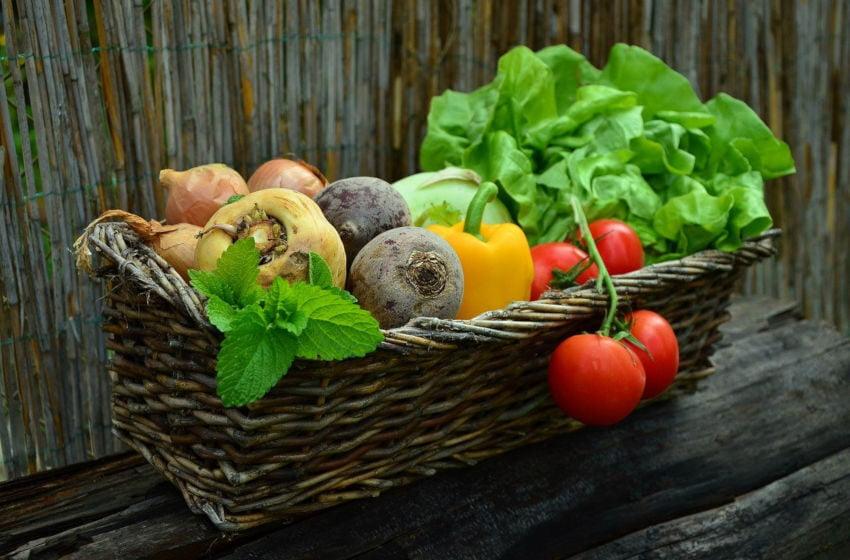 Tabela Periódica dos Vegetais: um ótimo recurso para fazer escolhas alimentares saudáveis